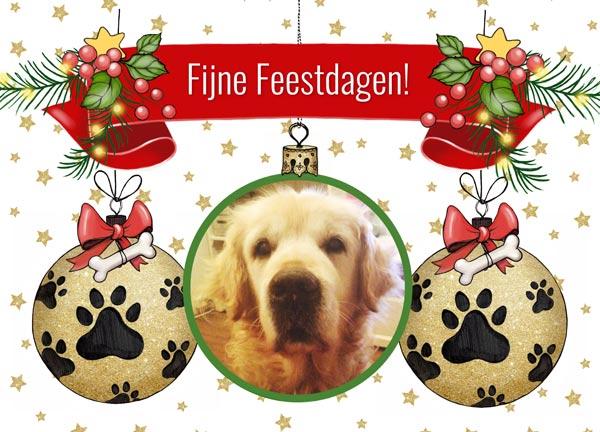 kerstkaart met hond in kerstbal