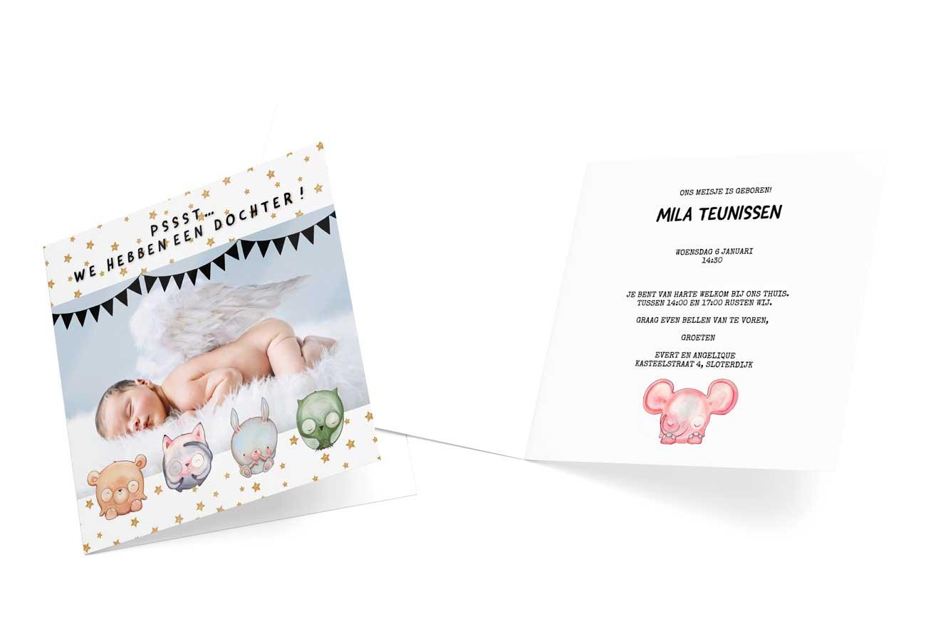 Geboortekaartje voor meisje met dierenkarakters