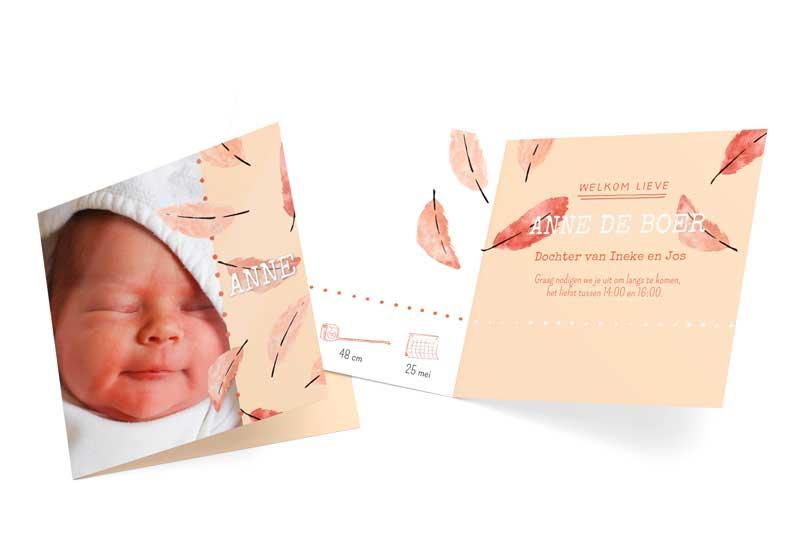Geboortekaartje meisje met rose veertjes