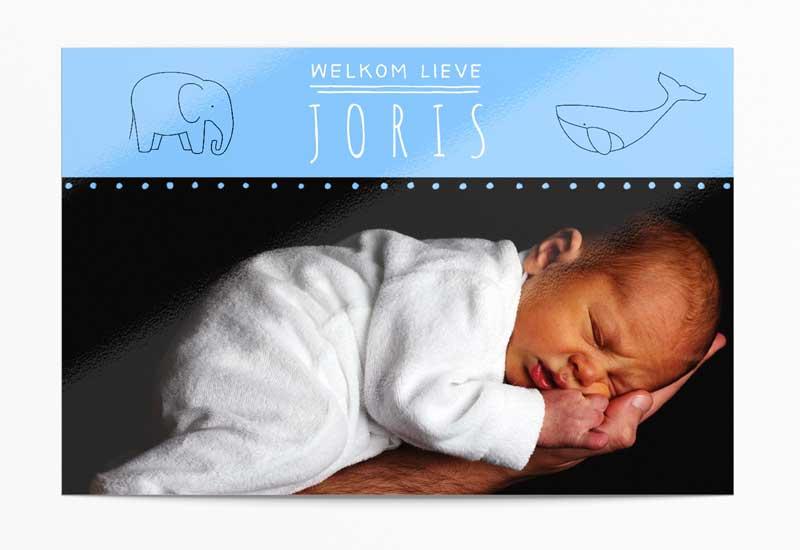 Simpel geboortekaartje voor jongen met dieren