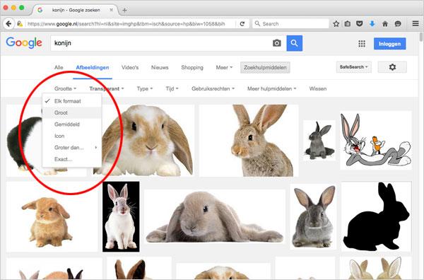 grote-afbeeldingen-zoeken-in-google