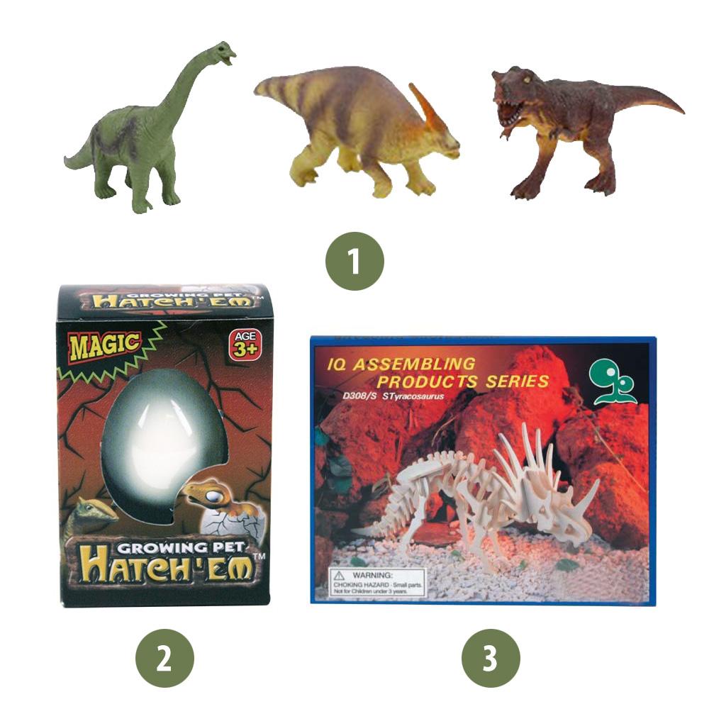 Kleine kadootjes voor kinderen met een dinosaurusfeestje. Fotokaarten helpt je op weg.