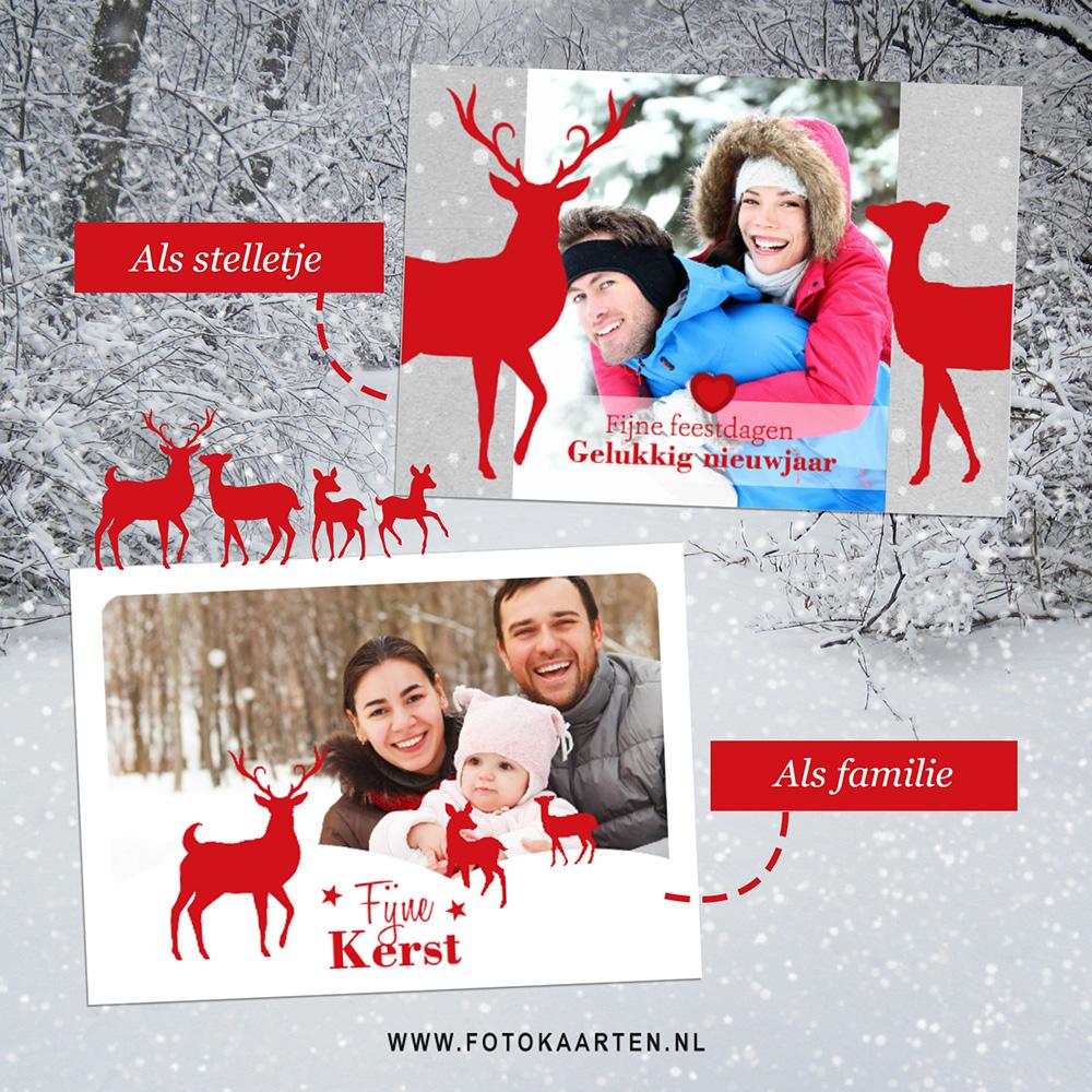 Hertjes_Herten_rendier_kerstkaart_met_foto_goedkope_mooie_kaarten_laten_drukken_idee