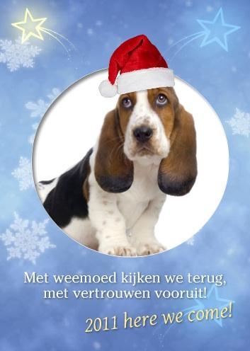 voorbeeld nieuwjaarskaart hond