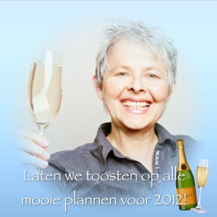 voorbeeld nieuwjaarskaart 2012